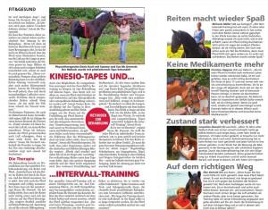Artikel-INRIDE-Sommer-2014-2
